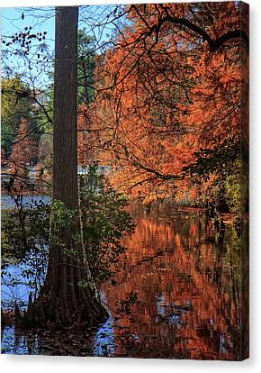 Canvas Print featuring the photograph Colors And Reflections At Trap Pond by Robert Pilkington
