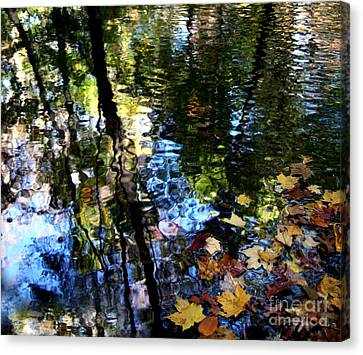 Colors Are Deeds And Sufferings Of Light Canvas Print by Monika A Leon