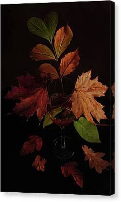 Colors In The Glass Canvas Print by Randi Grace Nilsberg
