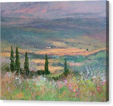 Colors In Tuscany Canvas Print