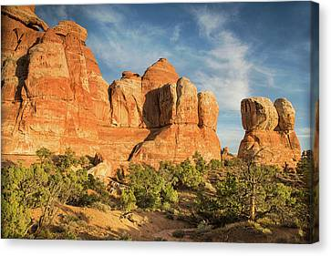 Colors Of Chesler Park Canvas Print
