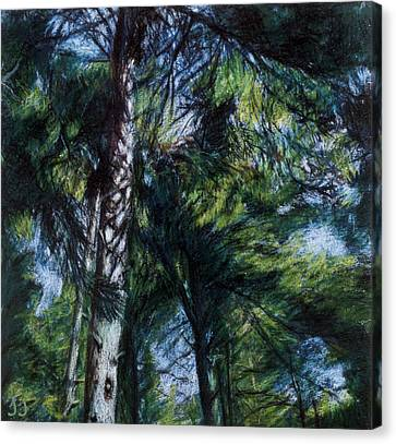 Colors Of Green Canvas Print