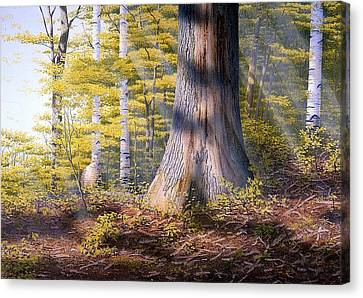 Colors Of Spring Canvas Print by Conrad Mieschke