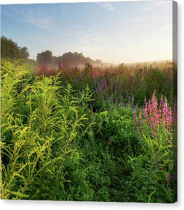 Colors Of Summer Square Canvas Print by Bill Wakeley