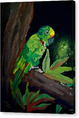 Colors Of The Parrot Canvas Print by Michael Grubb