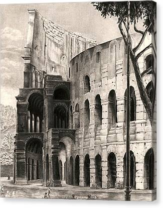 Colosseo Canvas Print by Norman Bean