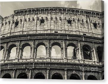 Ruin Canvas Print - Colosseum by Diane Diederich