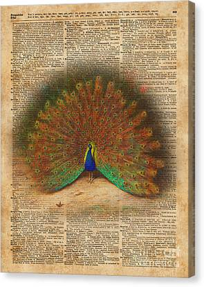 Colourful Beautiful Peacock Vintage Dictionary Art Canvas Print by Jacob Kuch