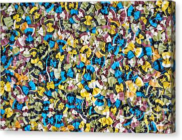 Colourful Butterflies Canvas Print by Tim Gainey