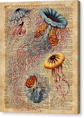 Collage Tapestries - Textiles Canvas Print - Colourful Jellyfish Marine Animals Illustration Vintage Dictionary Book Page,discomedusae by Jacob Kuch