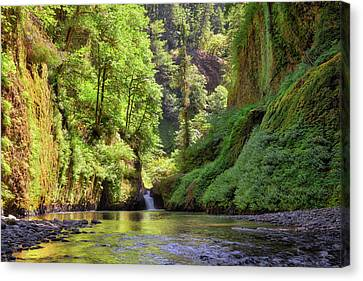 Canvas Print - Columbia Gorge Waterfall In Summer by David Gn