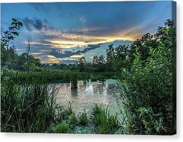 Columbia Marsh Sunset Canvas Print