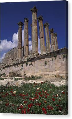 Columns In The Ancient Roman City Canvas Print by Richard Nowitz