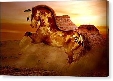 Comanche Canvas Print by Valerie Anne Kelly