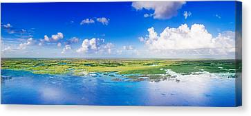 Fly Away Canvas Print by Mark Andrew Thomas