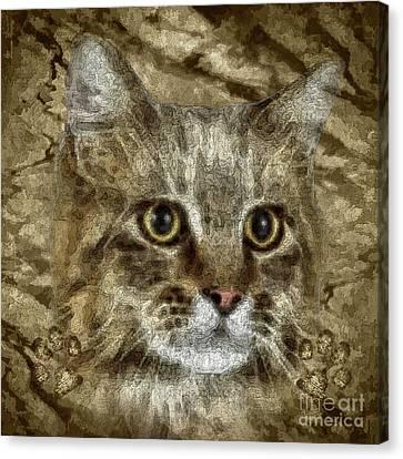 Animal Artist Canvas Print - Comet by Shafawndi Heartski