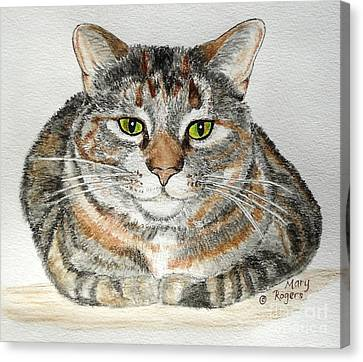 Comfortable Cat Canvas Print by Mary Rogers