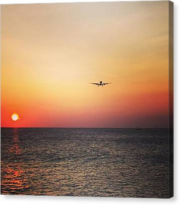 Klm Canvas Print - Coming Home by Jennifer Ansier