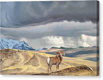 Coming Rainstorm Canvas Print