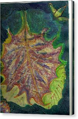 Coming To Me Floating Leaf  Canvas Print by Anne-Elizabeth Whiteway