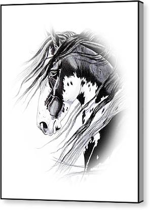 Commanche Canvas Print by Cheryl Poland
