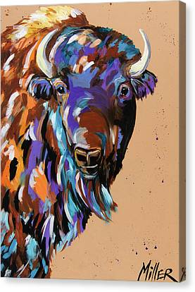 Commander Canvas Print by Tracy Miller
