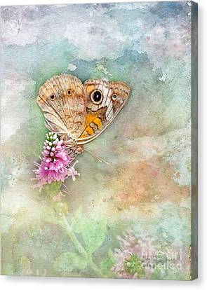 Canvas Print featuring the photograph Common Buckeye by Betty LaRue