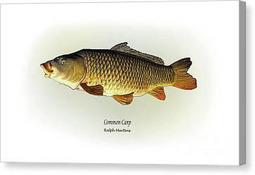 Common Carp Canvas Print by Ralph Martens