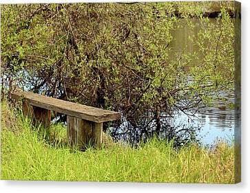 Canvas Print featuring the photograph Communing With Nature by Art Block Collections