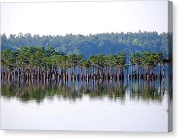 Compass Lake Canvas Print