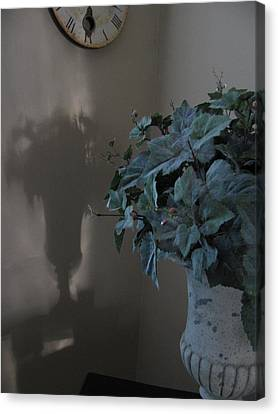 Canvas Print featuring the photograph Compliments Of The Sun by Lindie Racz