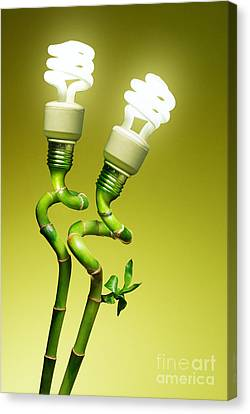 Conceptual Lamps Canvas Print by Carlos Caetano