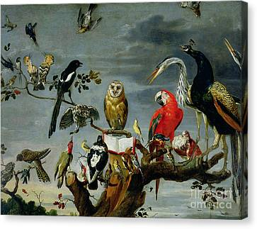 Crane Canvas Print - Concert Of Birds by Frans Snijders