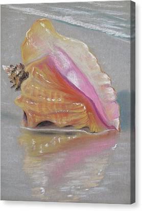 Conch On Beach Canvas Print by Joan Swanson