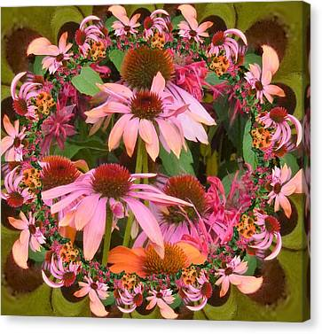 Coneflower 2 Canvas Print by Nancy Pauling