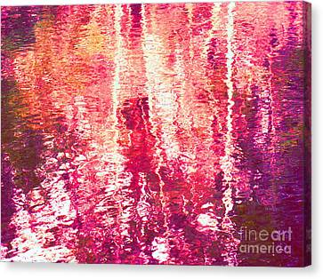 Conflicted In The Moment Canvas Print