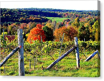 Connecticut Winery Canvas Print