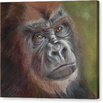 Canvas Print featuring the painting Contemplating Life by Ceci Watson