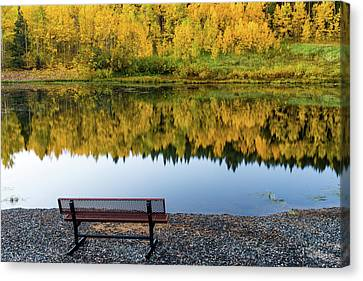 Canvas Print featuring the photograph Contemplating The Colors Of A Colorado Autumn by John De Bord