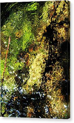 Contemplative Understanding Canvas Print