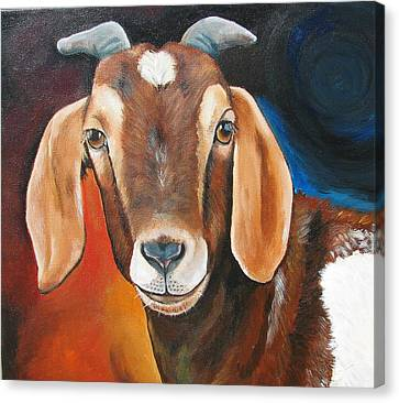 Contemporary Goat Canvas Print by Laura Carey