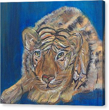 Contented Tiger Canvas Print by Mikki Alhart
