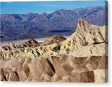 Contrasting Landscapes Canvas Print