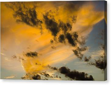 Canvas Print featuring the photograph Contrasts by Wanda Krack