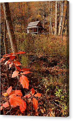 Cook Cabin Canvas Print by Alan Lenk