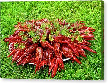 Cooked Crayfish With Dill Canvas Print by Jarmo Honkanen