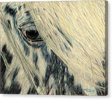 Cookie's Eye Canvas Print by Angela Finney