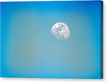 Cool Blue Canvas Print