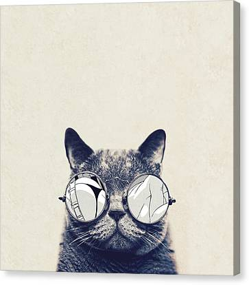 Glass Canvas Print - Cool Cat by Vitor Costa