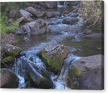 Canvas Print featuring the photograph Cool Creek by Tammy Sutherland